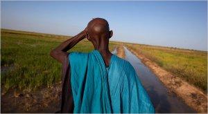 Malian Farmer